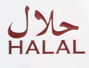 380. Our Report on the 2013 Halal Food Festival