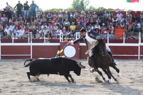 385. Report on Toronto's First Portuguese Bull Fight Festival 2013