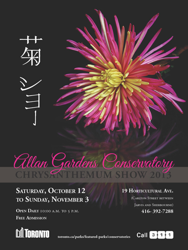 416. Autumn Colours and Chrysanthemum Show 2013
