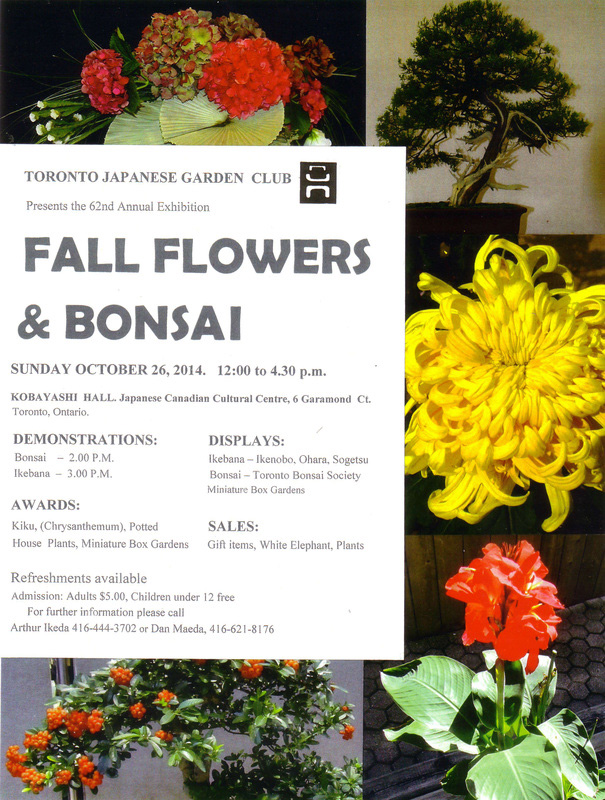 520. Fall Flowers and Bonsai – 2014
